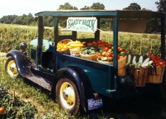 shady-brook-farm